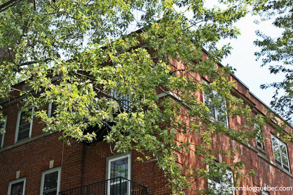 Immigrer Trouver un logement à Montreal monblogquebec
