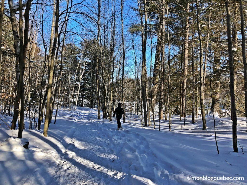 Nos bons plans Activités incontournables à Montréal en hiver monblogquebec
