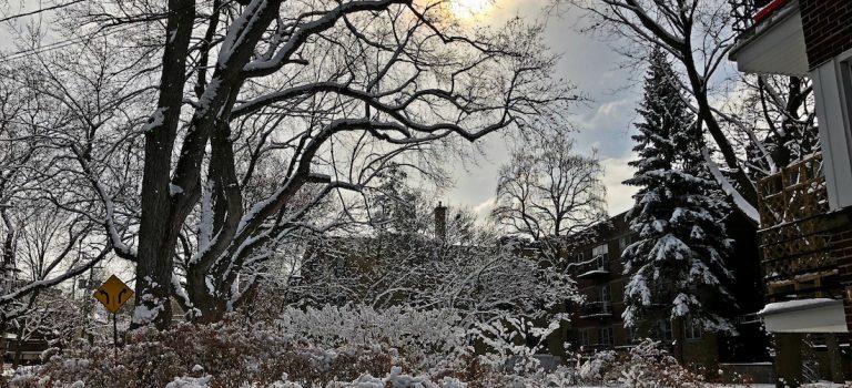 Nos bons plans Vivre à Montreal en hiver monblogquebec