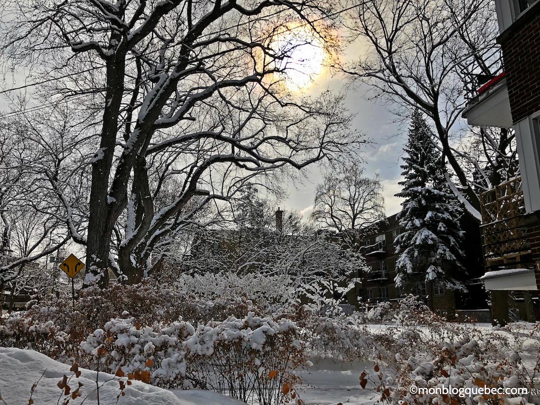 Nos bons plans au Québec 5 activités incontournables en hiver