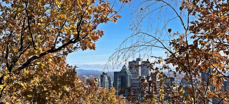 Vivre au Québec les différences qui changent ta vie monblogquebec