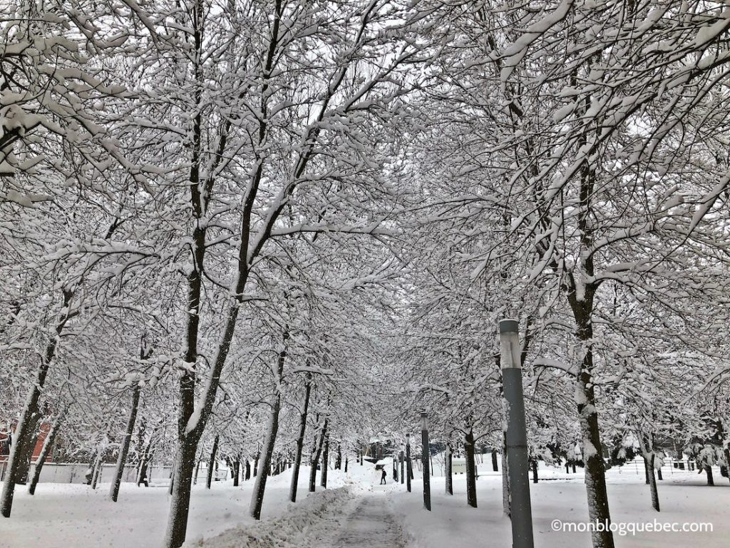Bilan après 3 ans à Montréal les hivers
