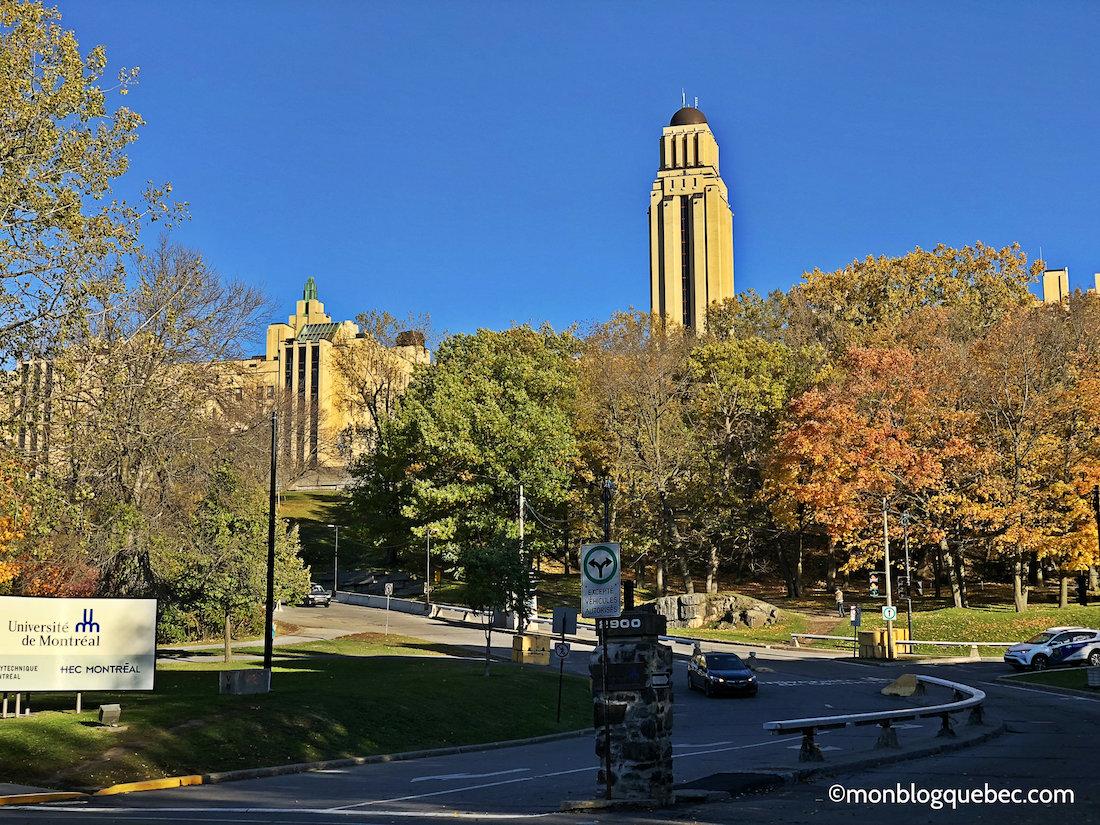 5 raisons de s'installer au Québec étudier au Québec