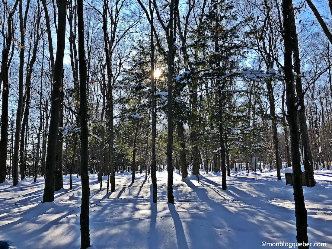 5 raisons de s'installer au Québec l'amour de la nature