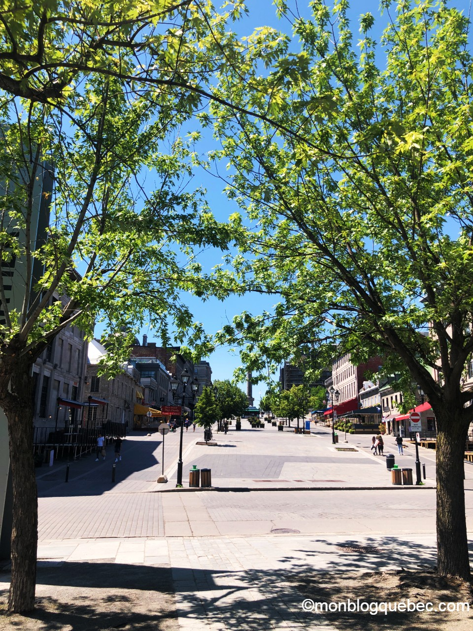 Covid-19 Montréal est désert